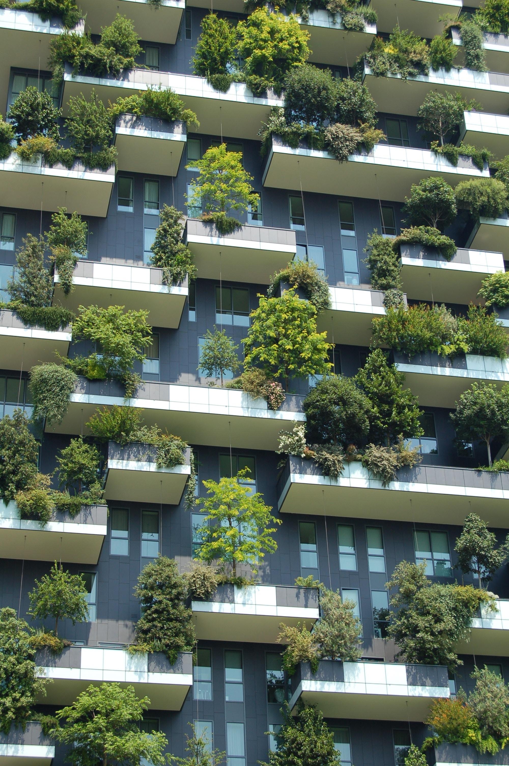 bâtiment vert écoresponsable énergie positive
